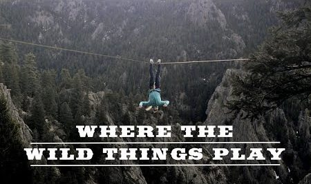 Where the wild things play