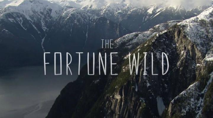 The fortune wild