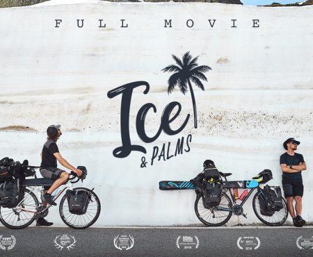 Ice & palms