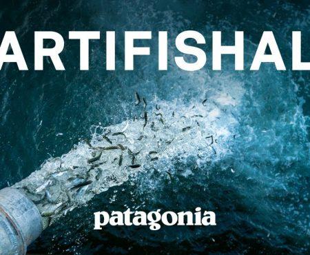 Artifishal