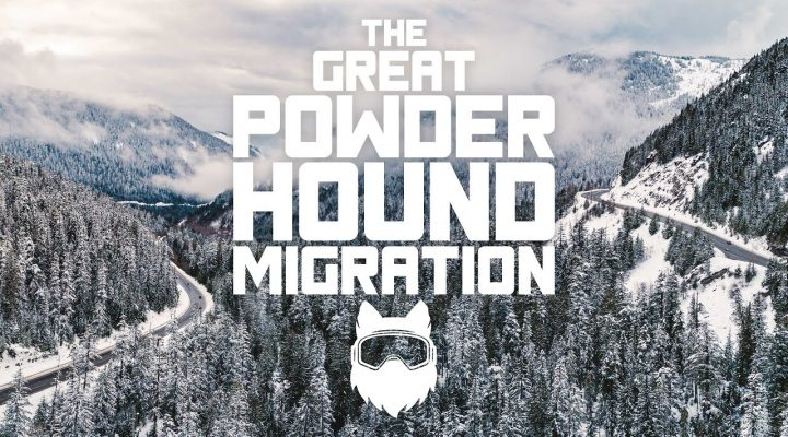 The great powder hound migration